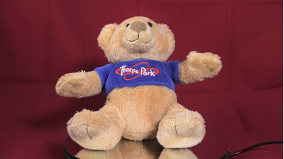 Picture of Thorpe Park Stuffed Bear